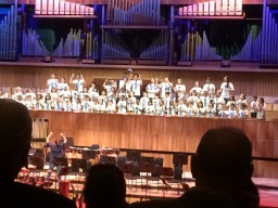 Kaos Perform at the Royal Festival Hall