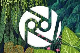 Rhythm Lab Records: Career Start