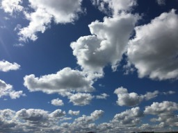 Blue Sky Thinking and Acknowledging the Clouds: Training at Plymouth Music Zone