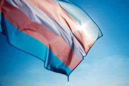 Happy International Transgender Day of Visibility!